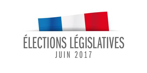 election legislative