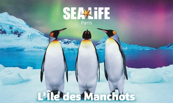 l'ile aux manchot_valdeurope_sealife_image